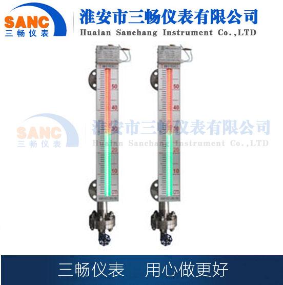 CDS-6型磁敏电子双色液位计